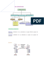 Clasificación de los carbohidratos.docx