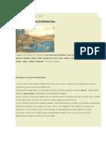 Comentariu La Cartea Iona