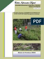 Boletín Informativo Universidad Internacional de Agricultura y Ganadería. Rivas, Nicaragua