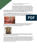 Código de arte contemporáneo- Seminario II