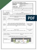 Priprema Za Sat - Microsoft Word – Tekstni Procesor