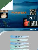 Avertebrata Air Porifera