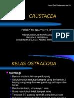 CRUSTACEA II