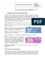 Manual de Proteccion Respiratoria para revision