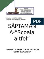 Scoala Altfel Clasele VI