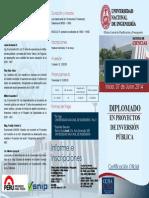 DIPLOMADOS EN PROYECTOS DE INVERSION PUBLICA