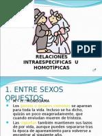 RELACIONES EN EL ECOSSITEMA.ppt
