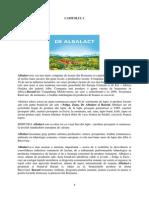CAPITOLUL 1 proiect final comanescu.pdf