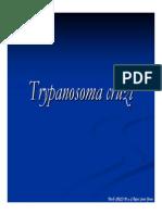 Tripanosomas