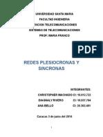 Jerarquia Plesicronas y Sincronas 2014