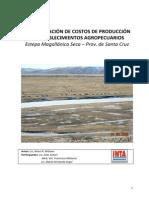 costosproduccionestablecimientosagropecuarios.pdf