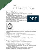 dna summary sheet