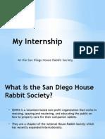 internship pol