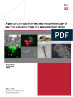 Aquaculture Application and Ecophysiology of Marine Bacteria