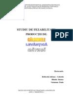DECIZII DE INVESTITII_PROIECT.doc