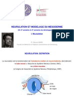 7-neurulation-mesoderme-2014-2015.pdf