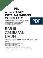 Profil Dinkes kota palembang 2013