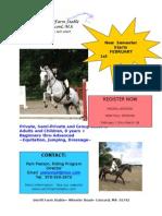 2010 Website Lesson Flyer[1]