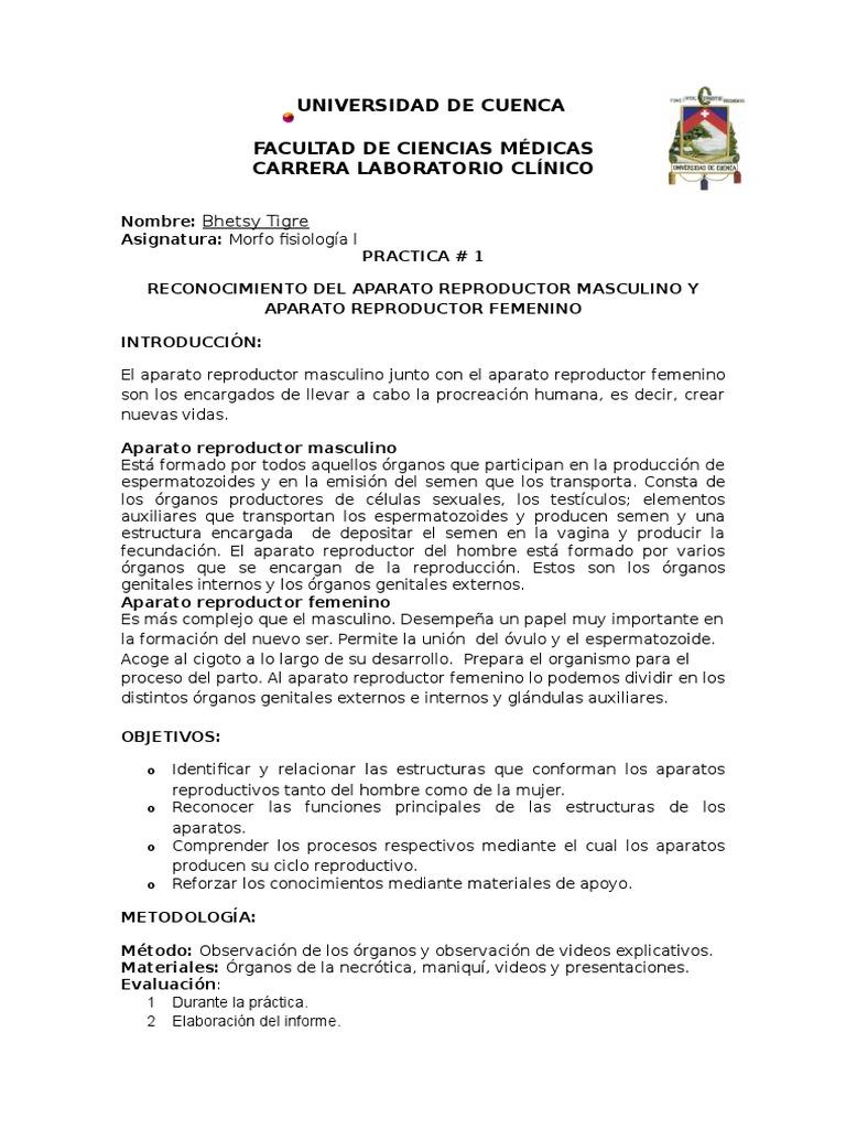 Lujo Anatomía Humana Y Fisiología De Laboratorio Práctico 1 ...
