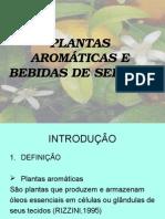 Plantas Aromáticas e Bebidas de Sergipe