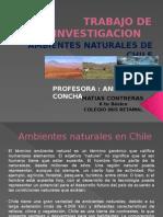 Trabajo de Investigacion.pptx Matias