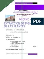 EXPERIMENTO DE EXTRACCION DE PIGMENTOS DE LAS PLANTAS