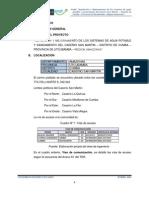 Resumen Ejecutivo San Martin