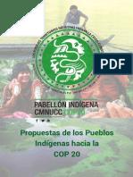 Abya Yala Propuestas de Los Pueblos Indigenas-CUENCAS