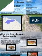Presentacion Los Llanos