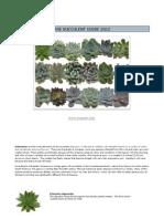 Mayesh Wholesale Florist - Succulent Guide