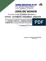 Diploma 2009 (1).doc