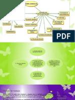 Diseño Curricular-Exposicon Eq.1