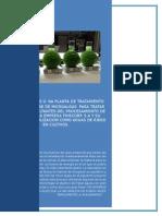 PROYECTO INTEGRADOR - MECANICA DE FLUIDOS (Autoguardado).docx