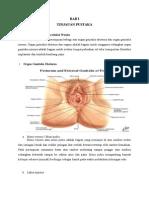 makalah anatomi
