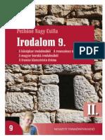 Irodalom Pethőné 2.pdf