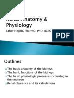 Renal Anatomy %26 Physiology MIU BCPS 2015