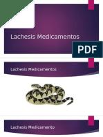 Lachesis Medicamentos