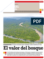 Potencial Forestal