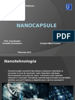 Nanocapsule