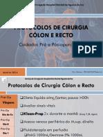Protocolos de Cirurgia Cólon , Recto, Hemorróidas e Fístulas Anais