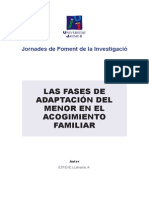 Fases Adaptacion Acogiminento Familiar