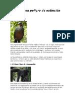 animales y plantas saludables.rtf