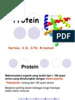 kul 1-2  protein