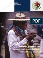 consulta_sobre_alcoholismo_pueblos_indigenas.pdf