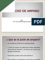 JUICIO DE AMPARO.pdf