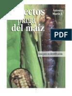 Insectos Plaga Del Maíz