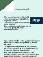 Curs 8 Patologie Hidrica