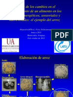 Calidad Sensorial en Arroz Uruguay