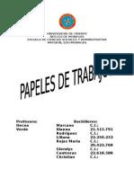 PAPELES DE TRABAJO..docx