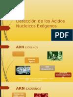DETERMINACIÓN DE LOS ÁCIDOS NUCLEICOS EXÓGENOS